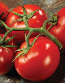 The Superfood To Eat: Tomatoes