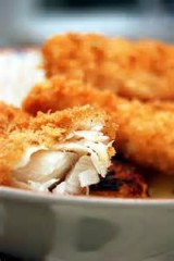Jeff's Fish Fillets with Panko